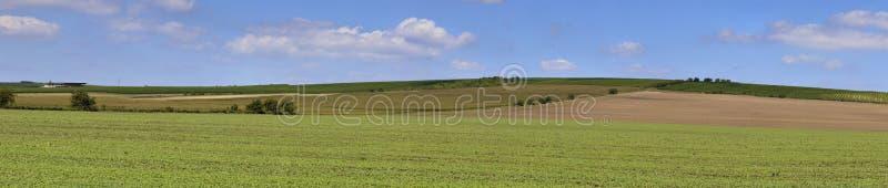 开放的农田 免版税库存图片