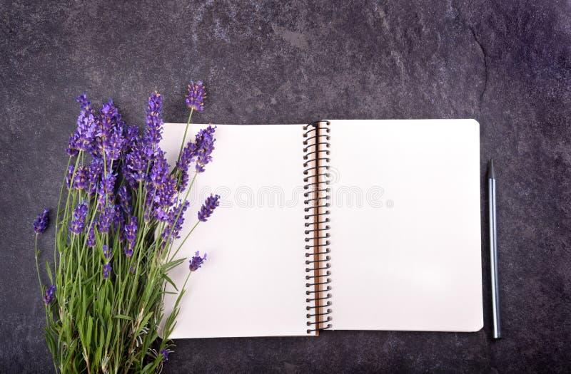开放空白的笔记薄和淡紫色花束大模型  图库摄影