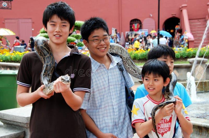 开玩笑马来西亚melaka蛇 库存照片