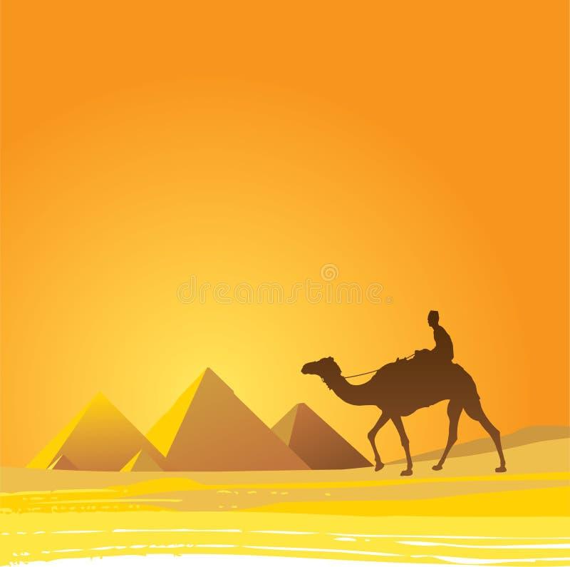 开罗,风景的金字塔 皇族释放例证