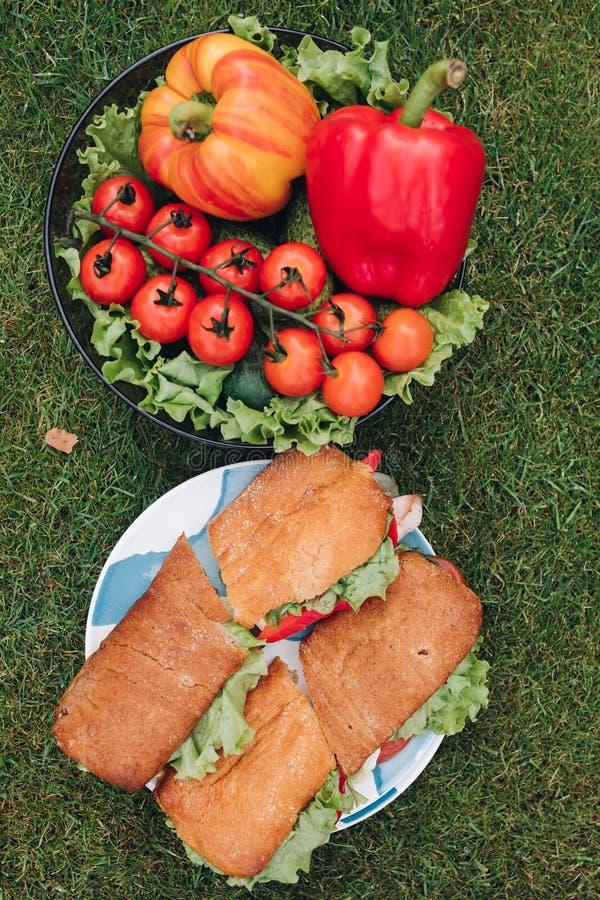 开胃新鲜的有机蔬菜和鲜美三明治在绿草草甸围拢的板材 免版税图库摄影