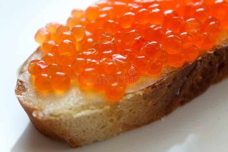 开胃红色鱼子酱三明治用在一块白色板材的黄油 免版税库存图片