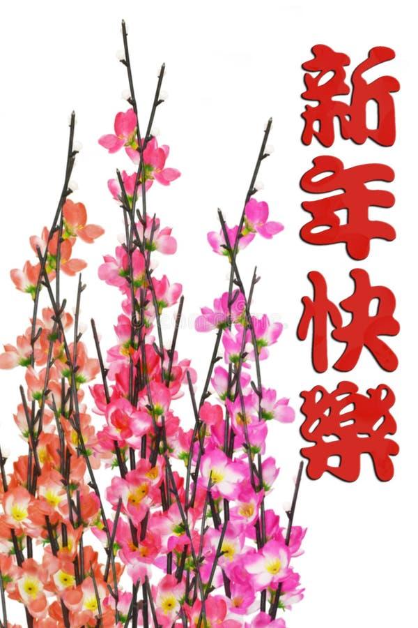 开花中国问候新的李子年 库存照片
