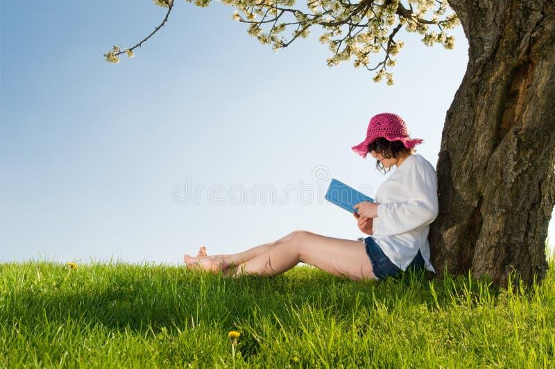 开花书女孩读坐的结构树下 免版税库存照片