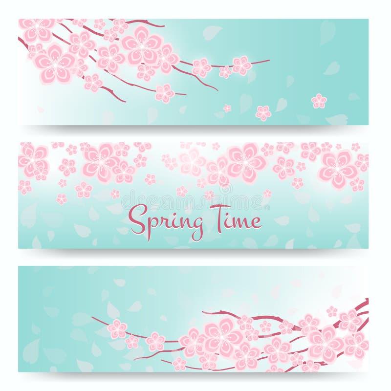 开花佐仓或樱桃卡片 横幅蓝色花绿色粉红色春天 皇族释放例证