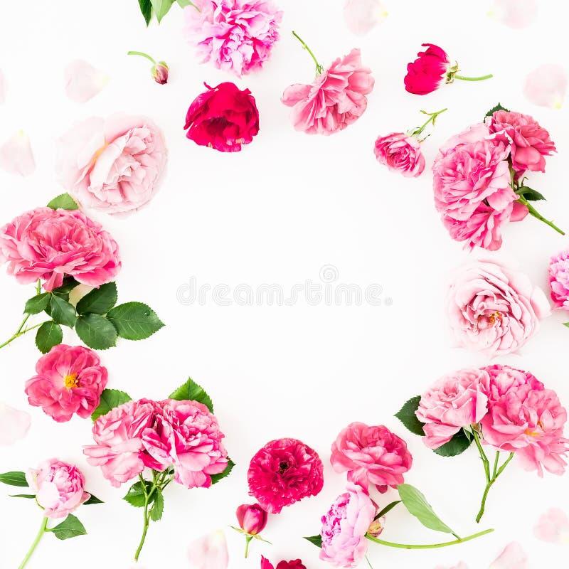 开花围绕桃红色玫瑰和银莲花属,在白色背景的牡丹花框架  平的位置,顶视图 淡色花纹理 库存图片