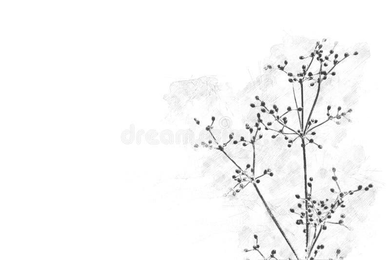 开花在水彩绘画的抽象叶子花 库存图片