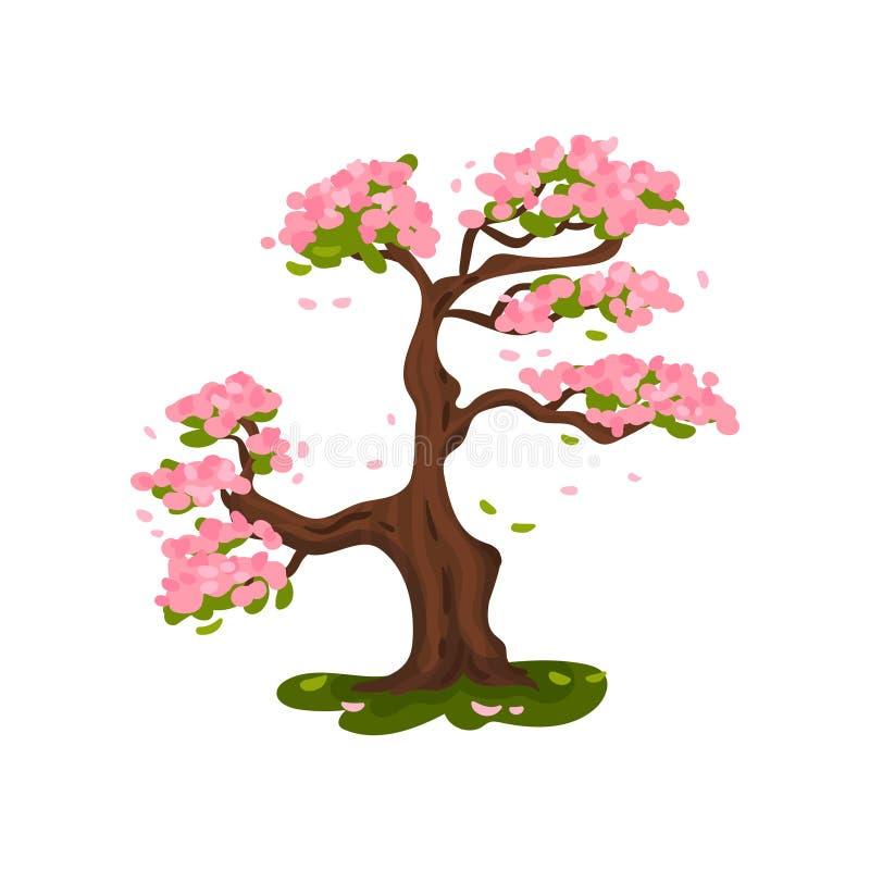 开花在草甸的佐仓 r 向量例证