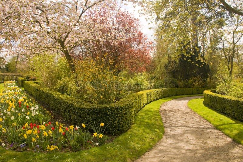 开花庭院 库存图片