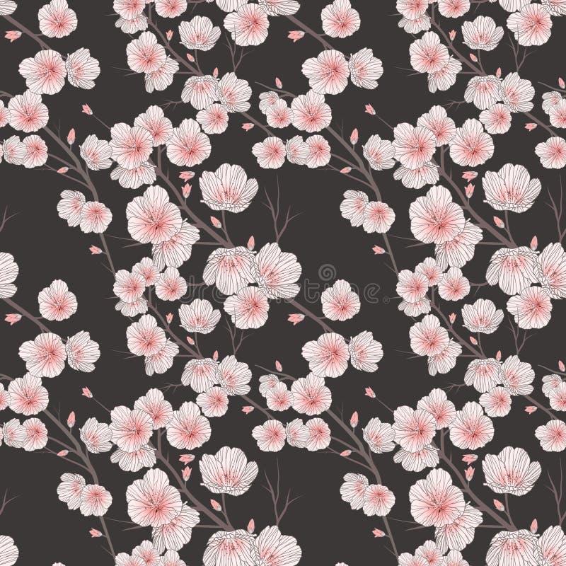 开花无缝樱桃的模式 向量例证