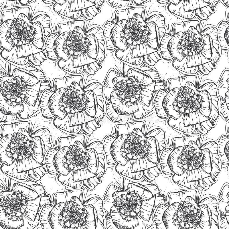 开花无缝的墙纸的,样式积土,网页背景,表面纹理样式黑白手拉的背景 库存例证