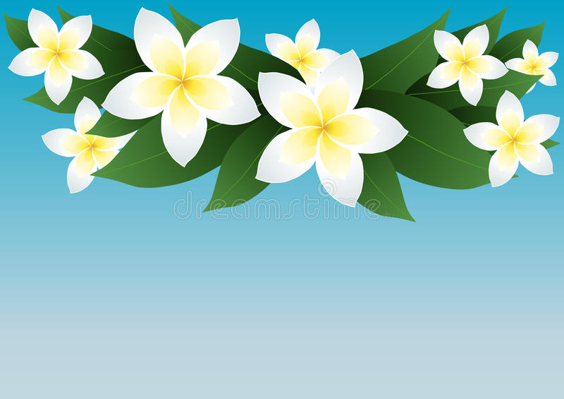 Download 开花杏仁奶油饼 库存例证. 插画 包括有 beautifuler, 花束, 芬芳, 图象, 附庸风雅, 颜色 - 15680024