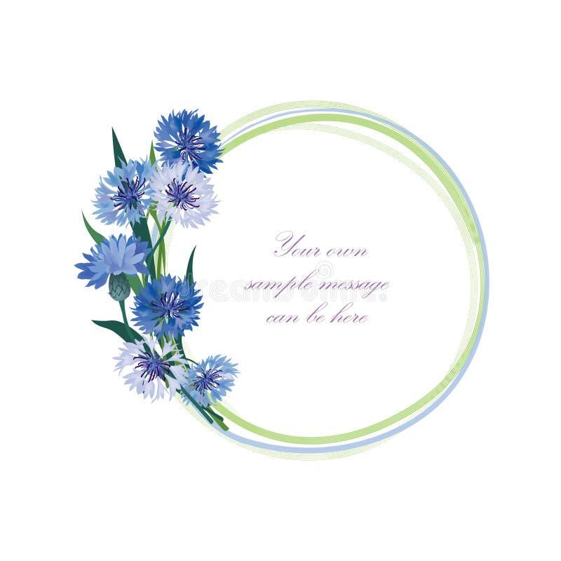 开花框架 花卉边界 被隔绝的花束矢车菊 向量例证
