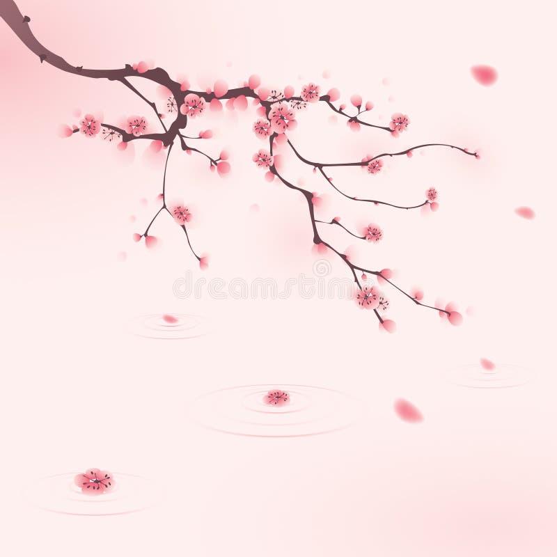 开花樱桃东方绘画春天样式 皇族释放例证