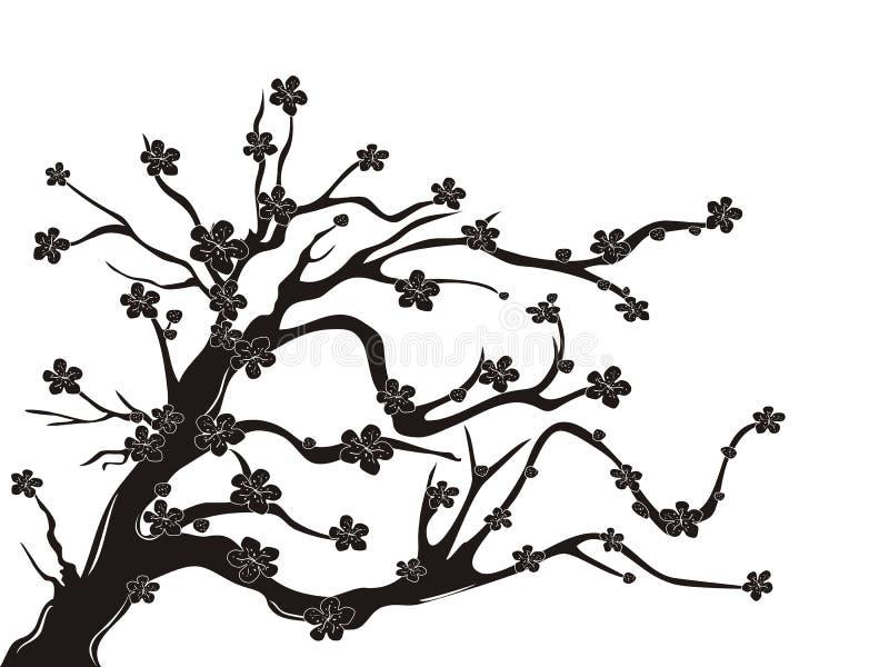 开花樱桃剪影结构树 向量例证