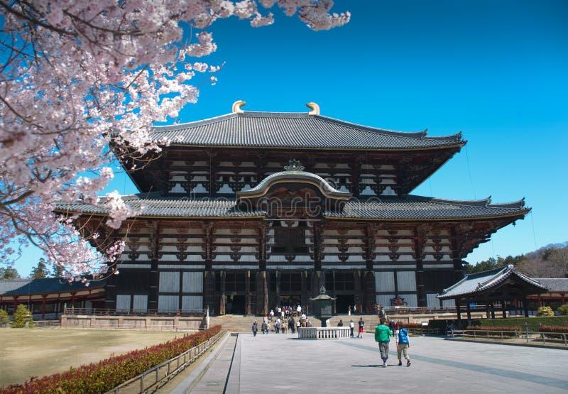 开花樱桃日本时间 库存图片
