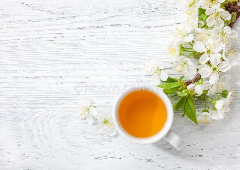 开花樱桃杯绿茶和分支在白色木桌上的 免版税库存图片