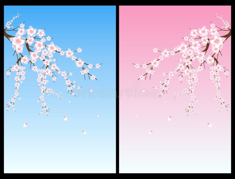 开花樱桃树 向量例证