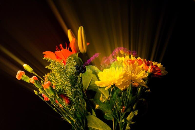 开花特别照明设备和过滤的技术提出的花束秀丽 免版税图库摄影