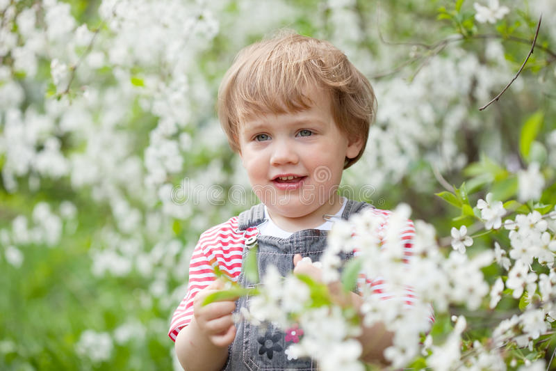 Download 开花的庭院的小孩 库存照片. 图片 包括有 春天, 成人, beautifuler, 系列, 乐趣, 人们 - 59101790