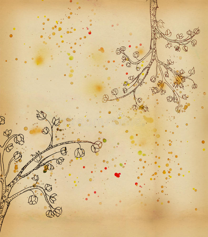 开花的结构树郁金香 库存例证