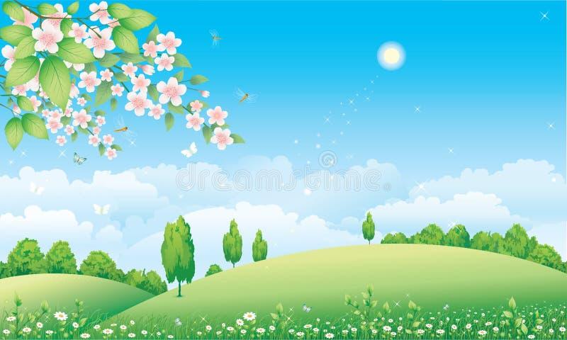 开花的花卉草甸工厂 皇族释放例证