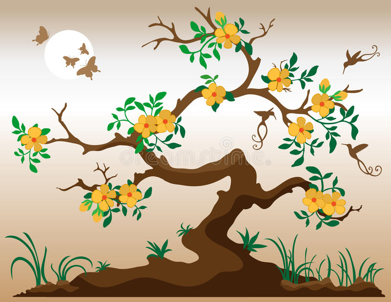 开花的蜂鸟结构树 皇族释放例证