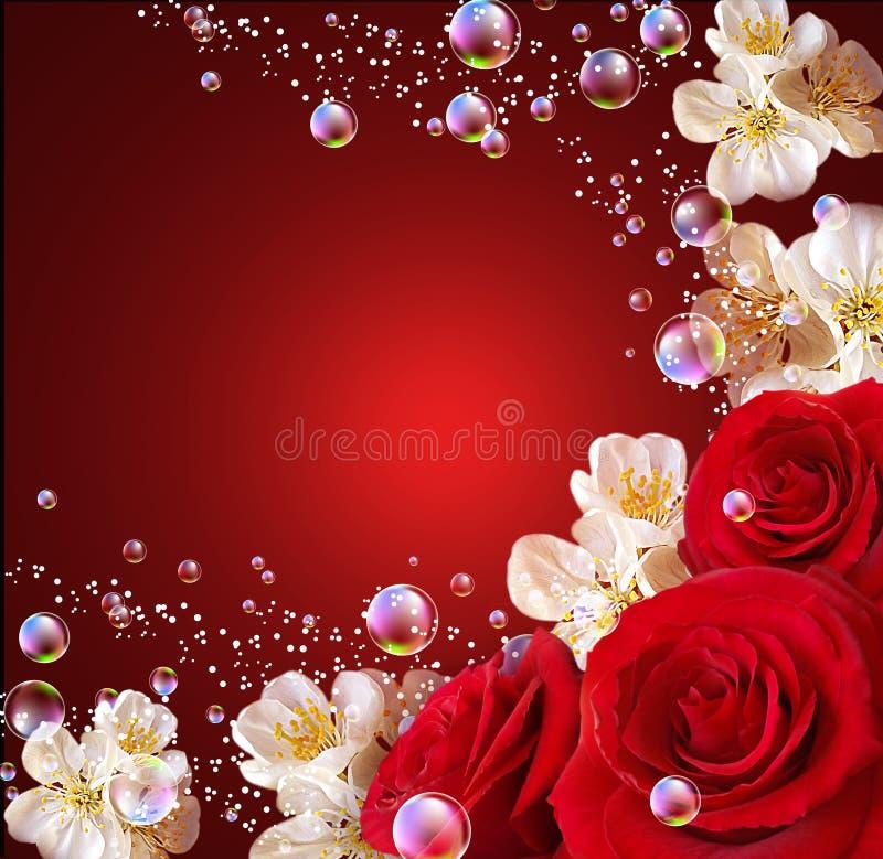 开花空白的玫瑰 向量例证