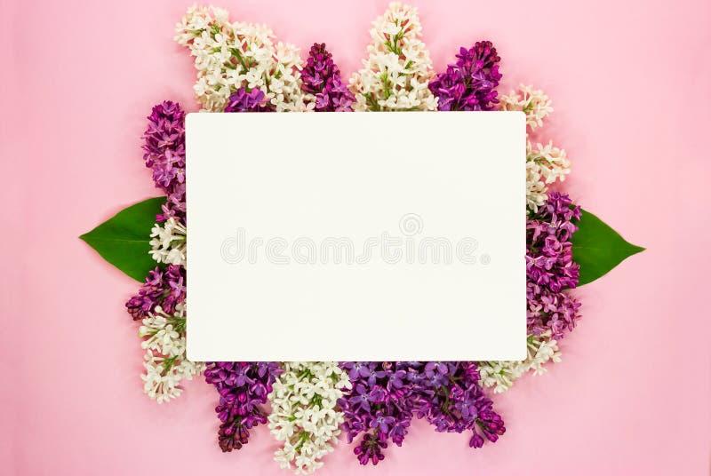 开花紫丁香属植物寻常在短信的淡紫色花和白纸卡片 r 浪漫花构成 库存图片