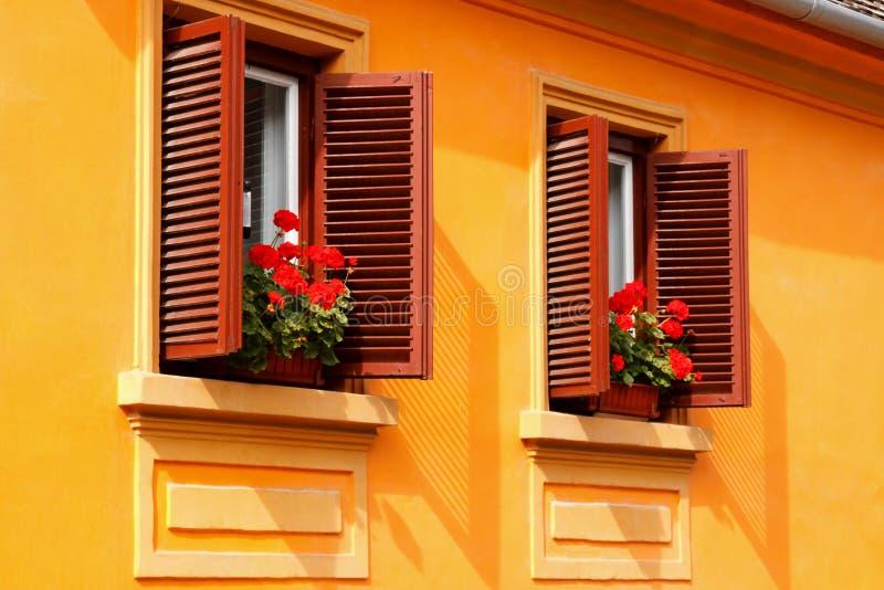 开花红色窗台 库存图片