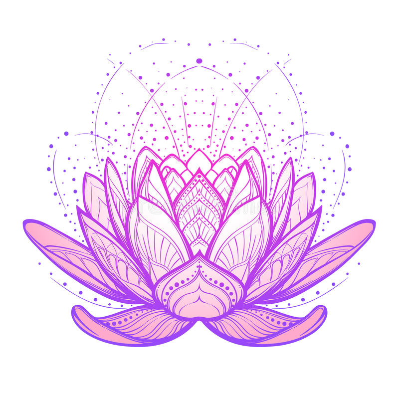 开花莲花 在白色背景的复杂风格化线性图画 图库摄影