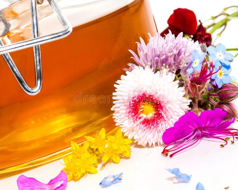 开花蜂蜜 免版税库存照片