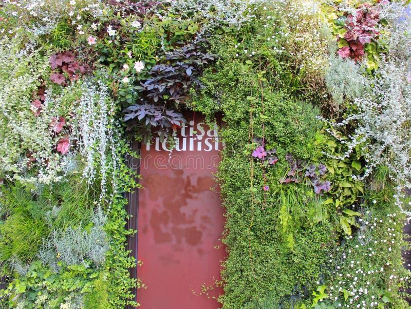 开花en缠绕的门对花店,巴黎 库存照片