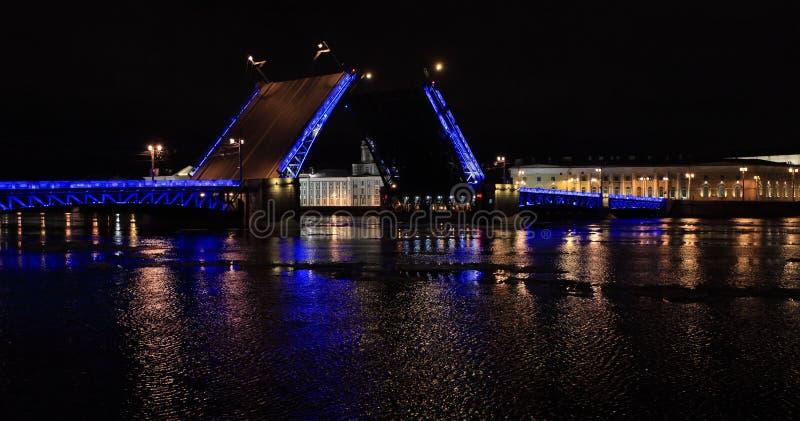 开头宫殿桥梁夜视图在圣彼德堡,俄罗斯 免版税图库摄影