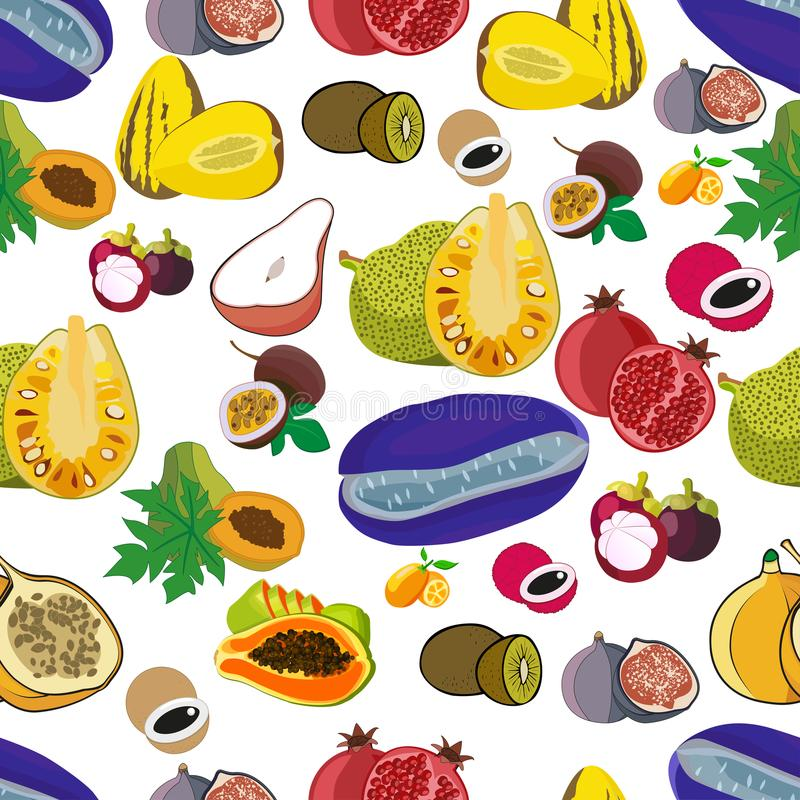 异乎寻常的传染媒介热带芒果和葡萄柚的果子无缝样式或者橙色,阳桃和龙结果实,番石榴和龙眼, 向量例证