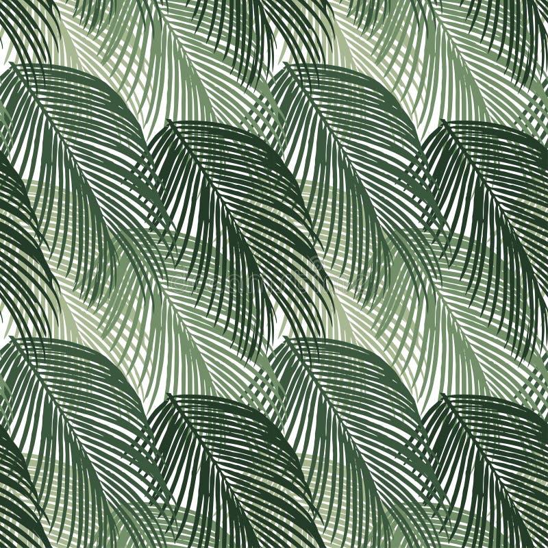 异乎寻常的密林棕榈树的无缝的样式 在白色背景的绿色热带叶子 库存例证