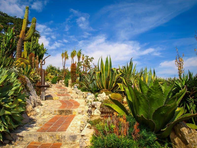 异乎寻常的庭院在Eze村庄,彻特d ` azur,法国 免版税库存图片