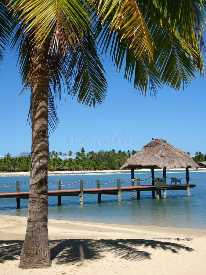 异乎寻常的斐济安排 库存照片