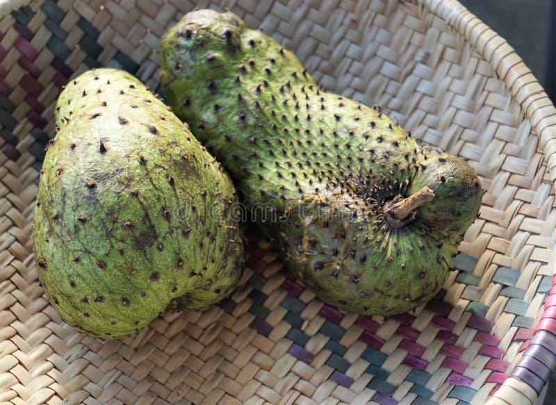 异乎寻常的果子在非洲 免版税库存照片