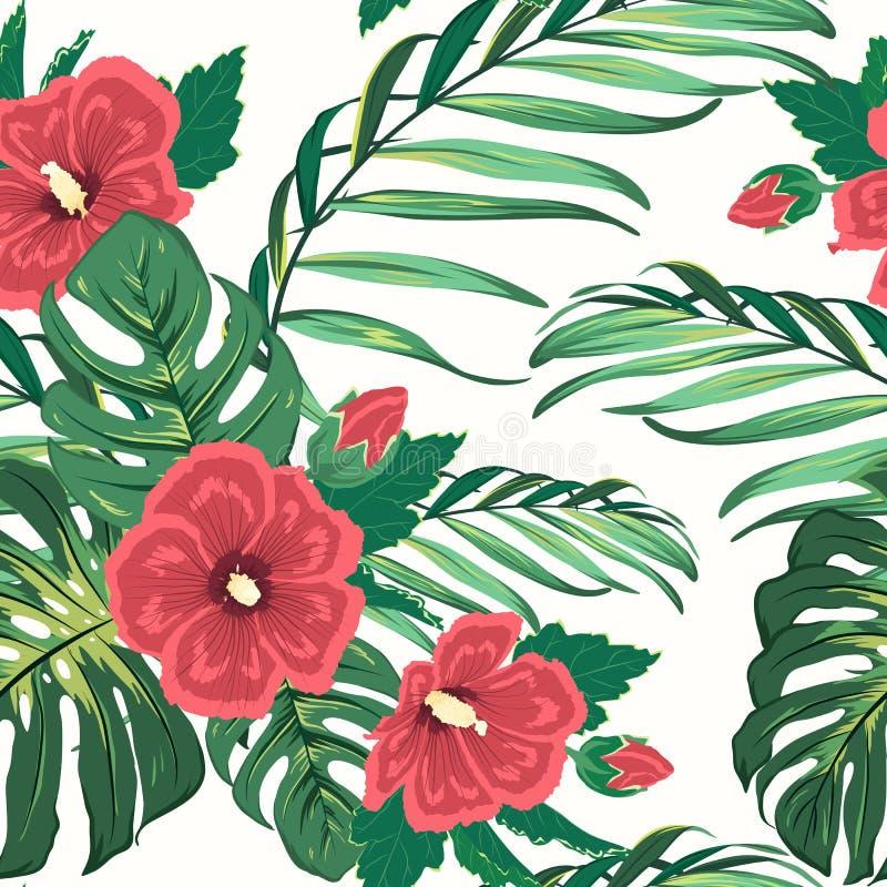 异乎寻常的热带花卉绿叶无缝的样式 库存例证