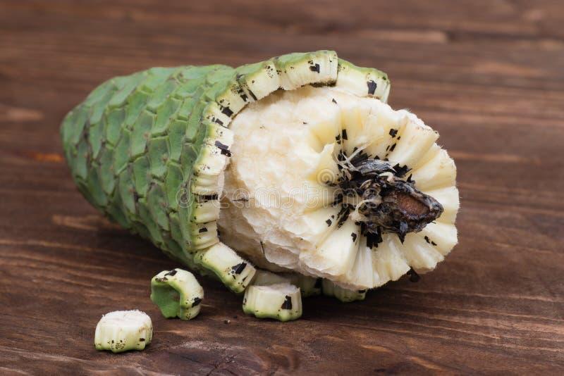 异乎寻常的果子monstera deliciosa在马德拉岛 免版税库存照片