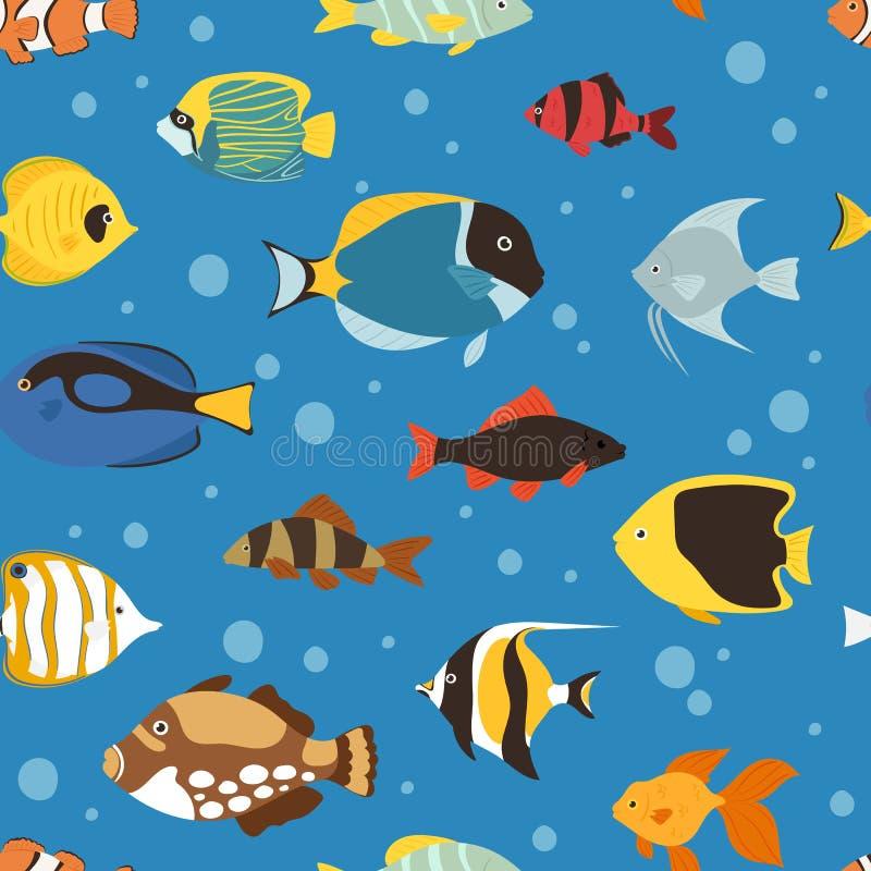 异乎寻常的热带鱼水下的海洋或水族馆水生自然无缝的样式背景传染媒介 皇族释放例证