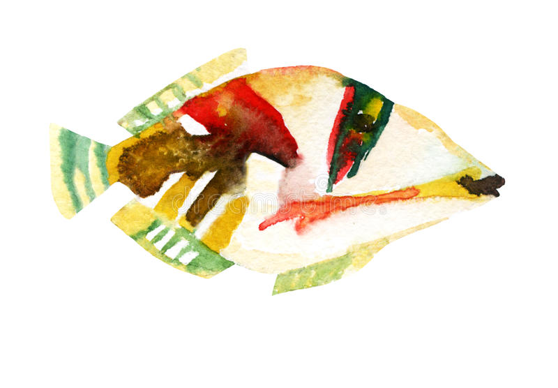 异乎寻常的鱼& x28; 热带毕加索triggerfish& x29; 水彩 库存例证