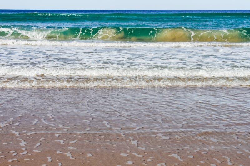 异常使有大理石花纹的看的波浪进入岸以褐色泥泞的水污点的和深绿与泡沫- Noosa朝向Austr 免版税图库摄影