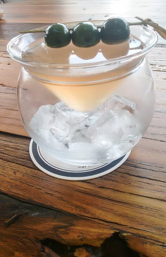 异常的马蒂尼鸡尾酒设定 库存图片