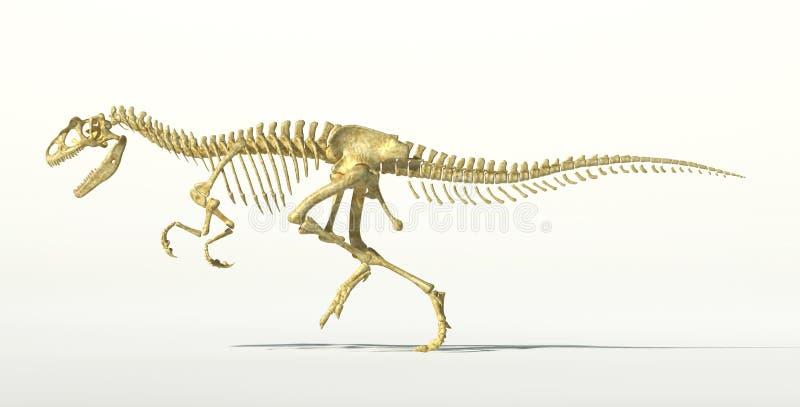 异龙恐龙照片拟真的骨骼。 向量例证