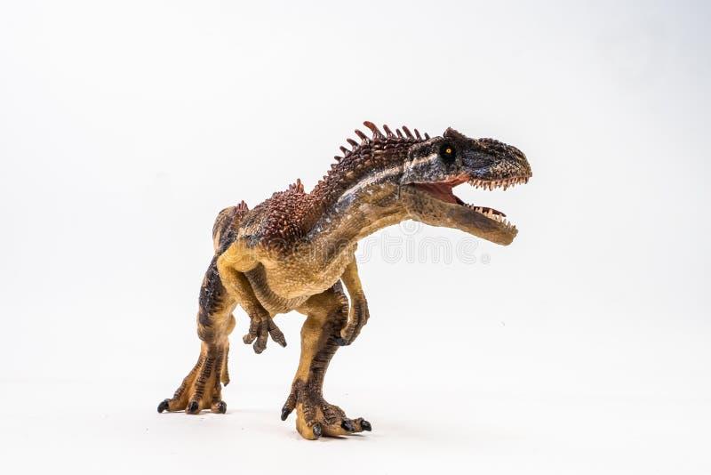 异龙,在白色背景的恐龙 免版税图库摄影