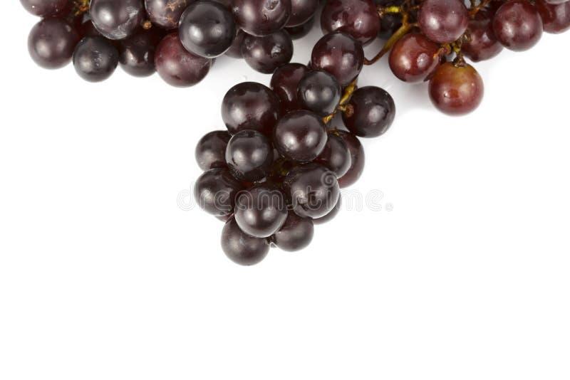 弄湿在白色的葡萄 库存图片