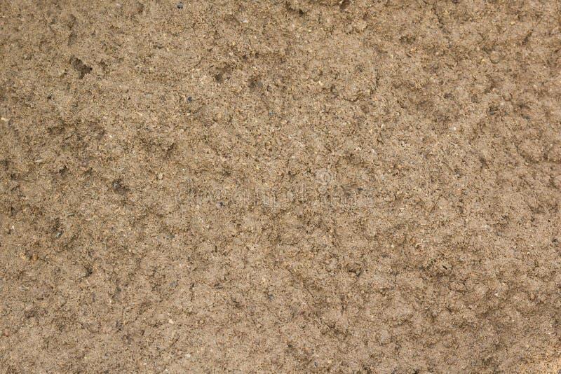 弄脏与一些的土纹理微粒在它 免版税图库摄影