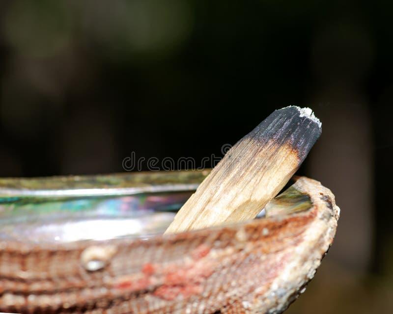 弄脏使用秘鲁帕洛桑托圣洁木香火棍子和鲍鱼壳的仪式在森林里 免版税库存图片